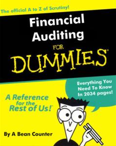 Financial-Audit